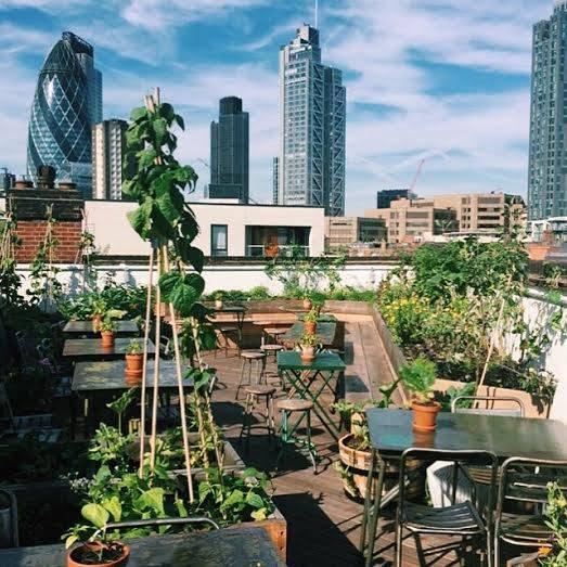 Garden – The Culpeper – 40 Commercial Street, E1 6LP