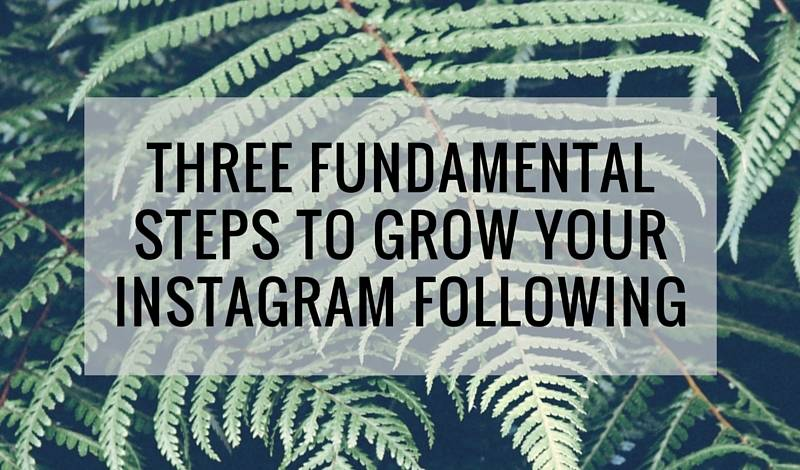 Three Fundamental Steps to Grow Your Instagram Following