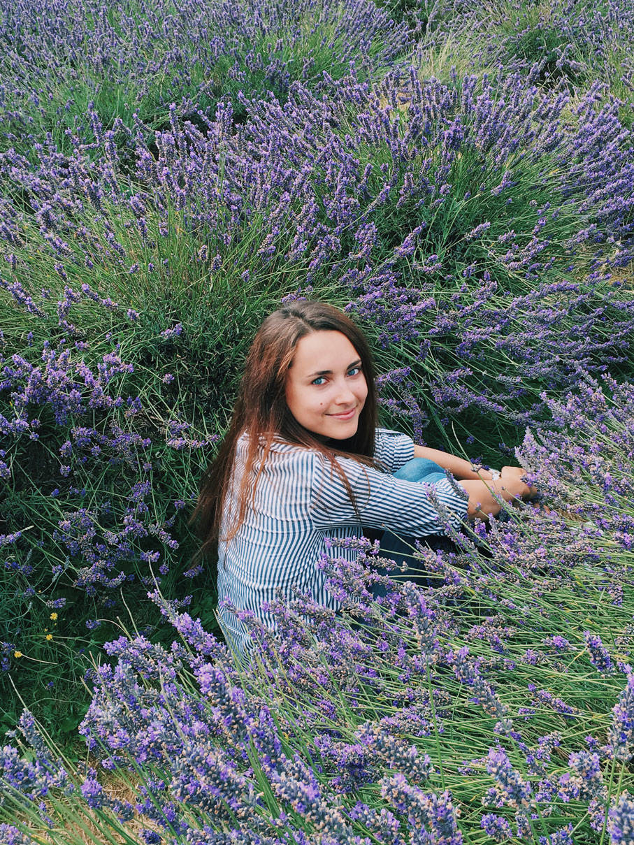 Lavender Fields in London photo ok but first coffee 4